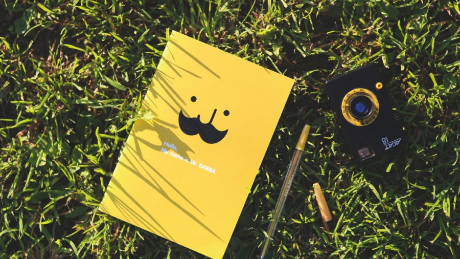 Yellow book in grass